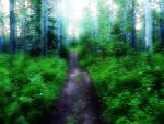 Heeding the Spiritual Call